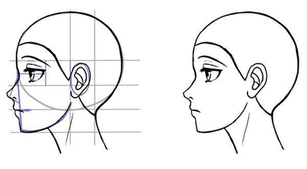 how to draw a 3 4 profile face