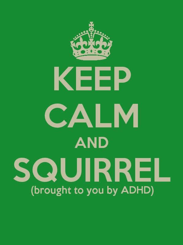 : Laughing, Squirrels, My Life, Giggles, Funny Stuff, Keepcalm, Adhd Humor, Totally Me, Keep Calm Signs