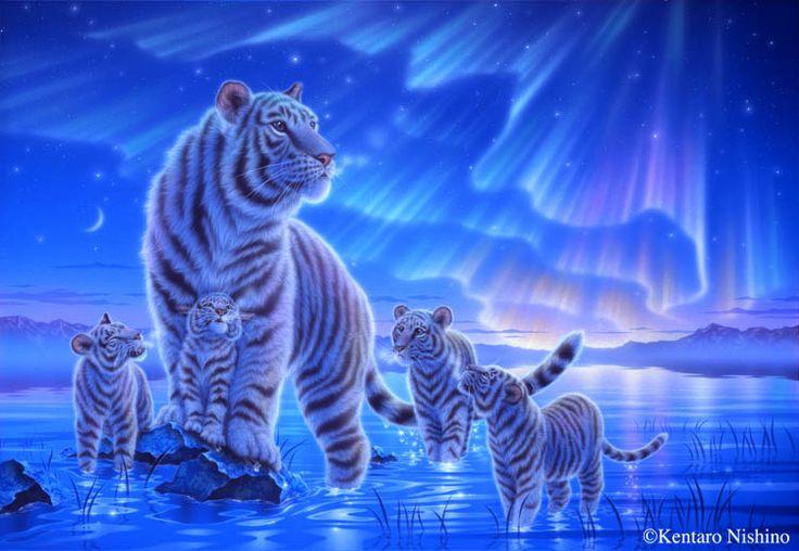 """Beyond the Aulora"" White tigers  50.0 × 72.7cm, Acrylic on canvas, 2011 Gallery Bigcats - Art of Kentaro Nishino"