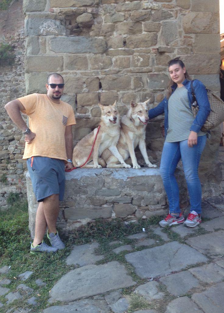 Caramella & Oblivion di Fossombrone, sotto la Torre di Artimino, Carmignano (Prato). #WeAreFossombrone #JuniorSaarloos
