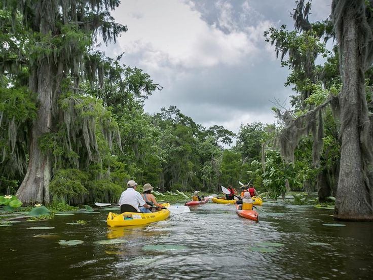 Good times paddling on Lake Martin   Louisiana Official Travel and Tourism Information