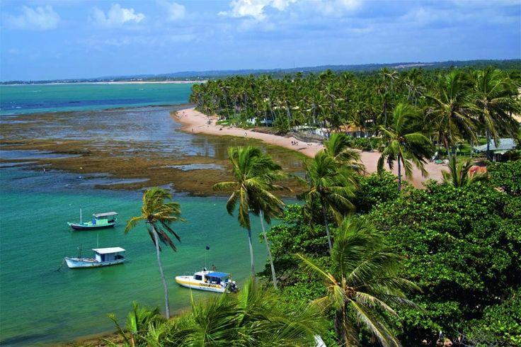 Praia do Forte, Costa dos Coqueiros – Bahia