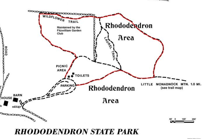 Ella's Trails | Rhododendron Loop Trail – Fitzwilliam NH | Hiking ...