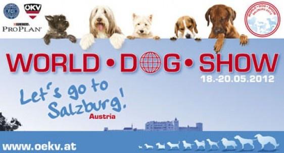 Watch the World Dog Show 2012 Salzburg, Austria HERE! - http://worldog.com/livestream-of-world-dog-show-2012-salzburg-austria#