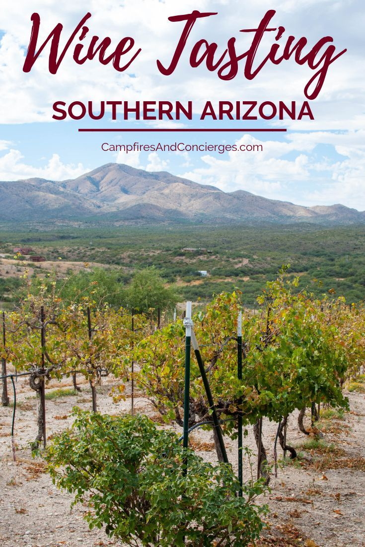 Sonoran Tasting Excursions: A Tour of Tucson Wineries