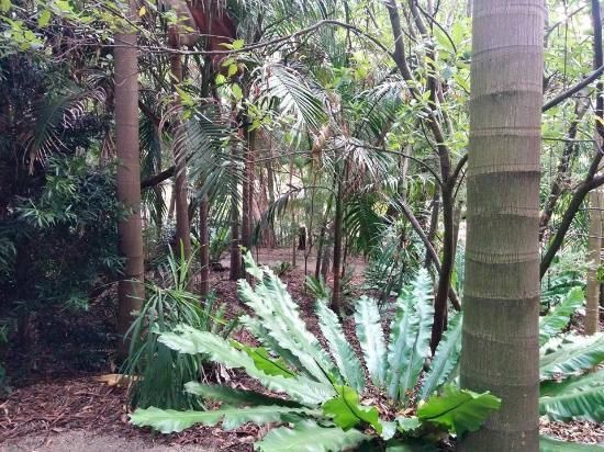 Maranoa Gardens Balwyn