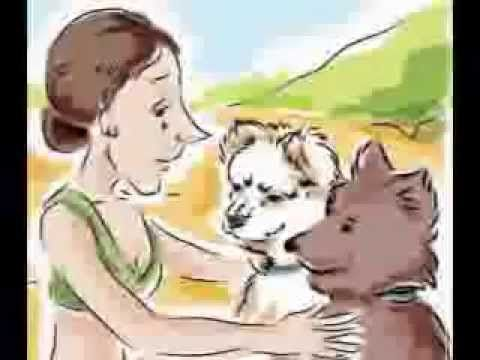 These kids storybooks online form part of the Morgie and Peej's Wagging Dog Tales series. These charming books have been written by a primary school teacher ...