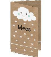 Geboortekaartje Mees wolkje