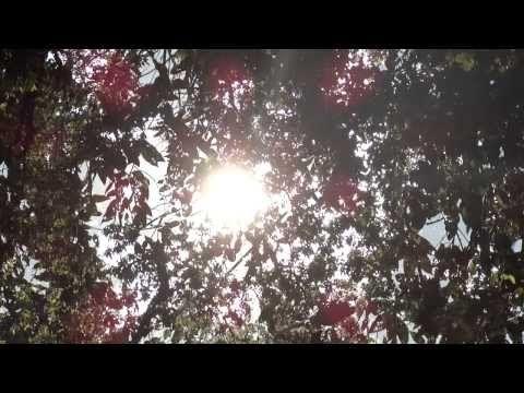 Merry Christmas!!! MILTON-FIRENZE  http://www.youtube.com/watch?v=DHSkJJ1Csio