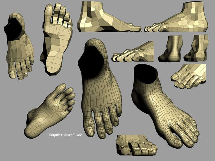 topology_feet.jpg (760×570)
