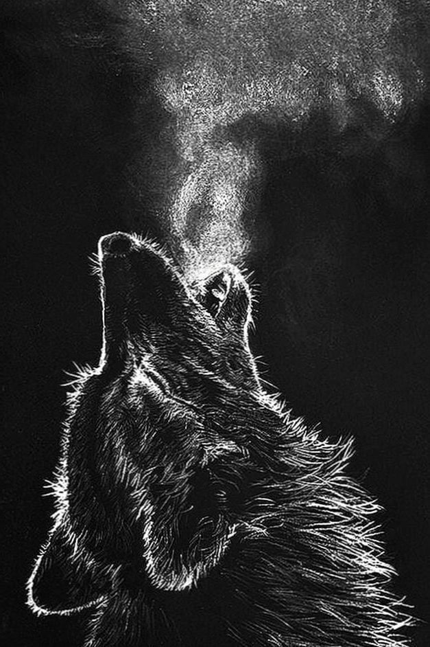 Hd Wallpapers Wolf Mobile Wolf Wallpaper 4k Wallpaper For Mobile Scary Wallpaper