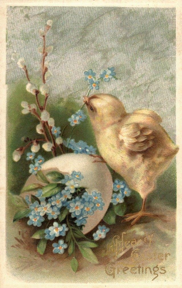 Советские открытки вербное воскресенье