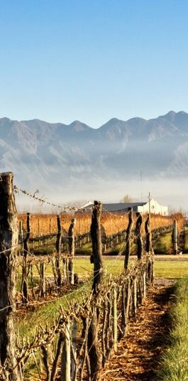 A South American #Wine Tour in Chile and Argentina