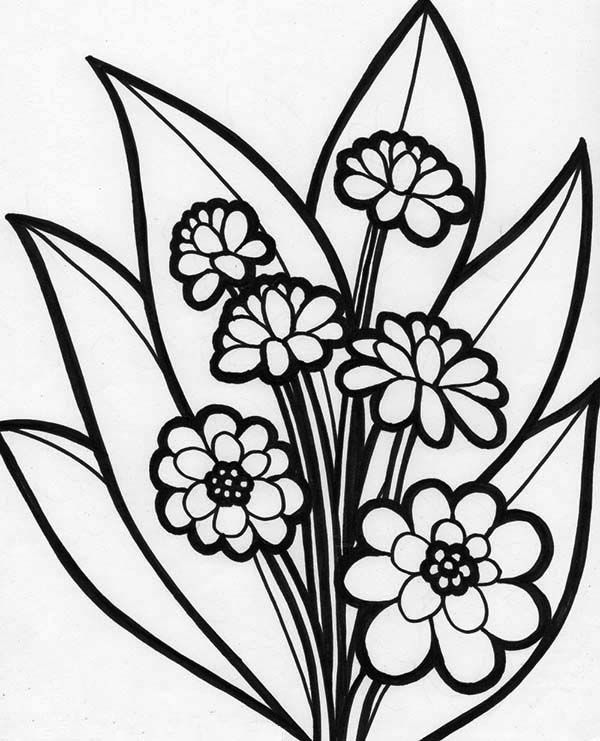 online flower coloring pages - photo#11