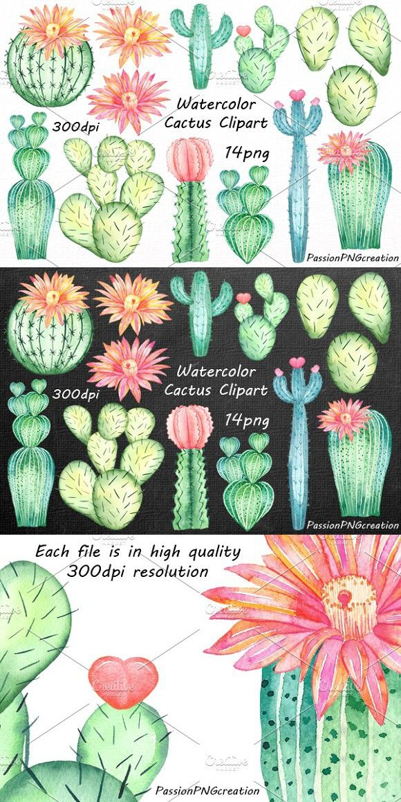 Watercolor Cactus Clipart. Wedding Card Templates