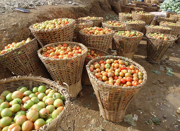 Tomato baskets in Nepal