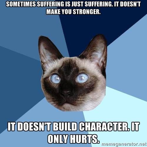 Yep . Pounding headache everyday for 17 years. Definitely not making me stronger. ..just bitter.