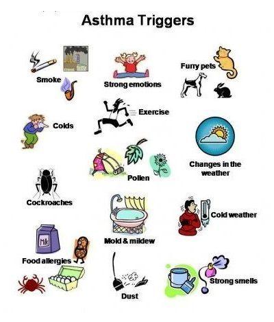 Cockroaches...hmmm...weird.. Asthma Triggers -