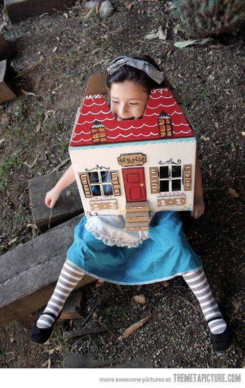 Brilliant Alice in Wonderland costume…