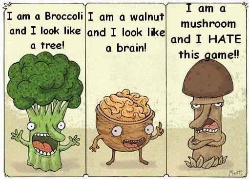 Food Jokes | Description: Funny Food Jokes