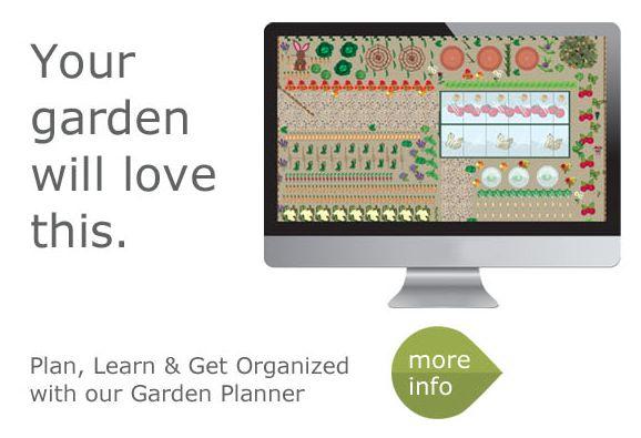 Planning A Vegetable Garden Layout