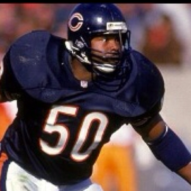 chicago bears history essay Journals such as william bradford's the history of plymouth plantation  and works such as william byrd's bears and pedro de castaneda's  essay : colonial.