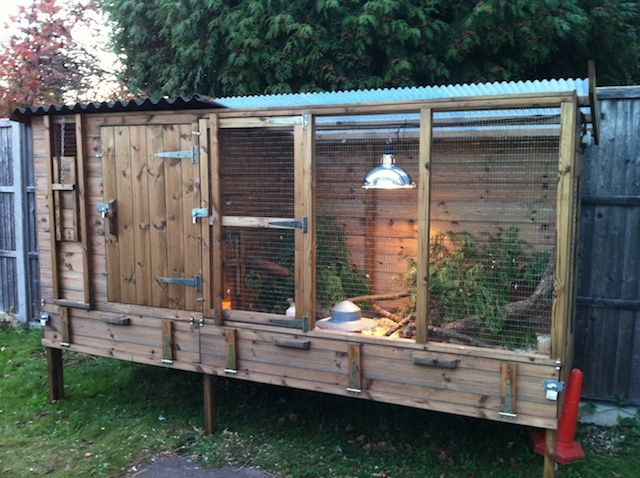 Quail Housing - Been thinking about raising some quail though none of the pens I've looked at were as nice as this.