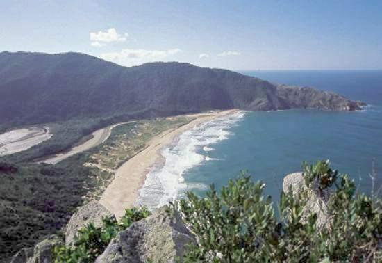 Resultados da Pesquisa de imagens do Google para http://www.portal2014.org.br/midia/cidades-sedes-noticias/praias_de_floripa__1342009-17387-1.jpg