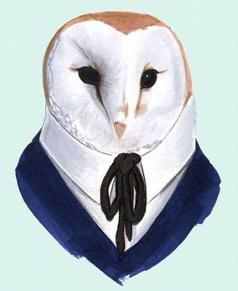 Owl Illustration- want this