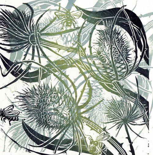 'Wild About Teasels' By Caroline Barker.  Blank Art Cards By Green Pebble. www.greenpebble.co.uk
