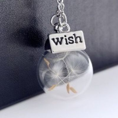 78 best Make a Wish images on Pinterest Make a wish