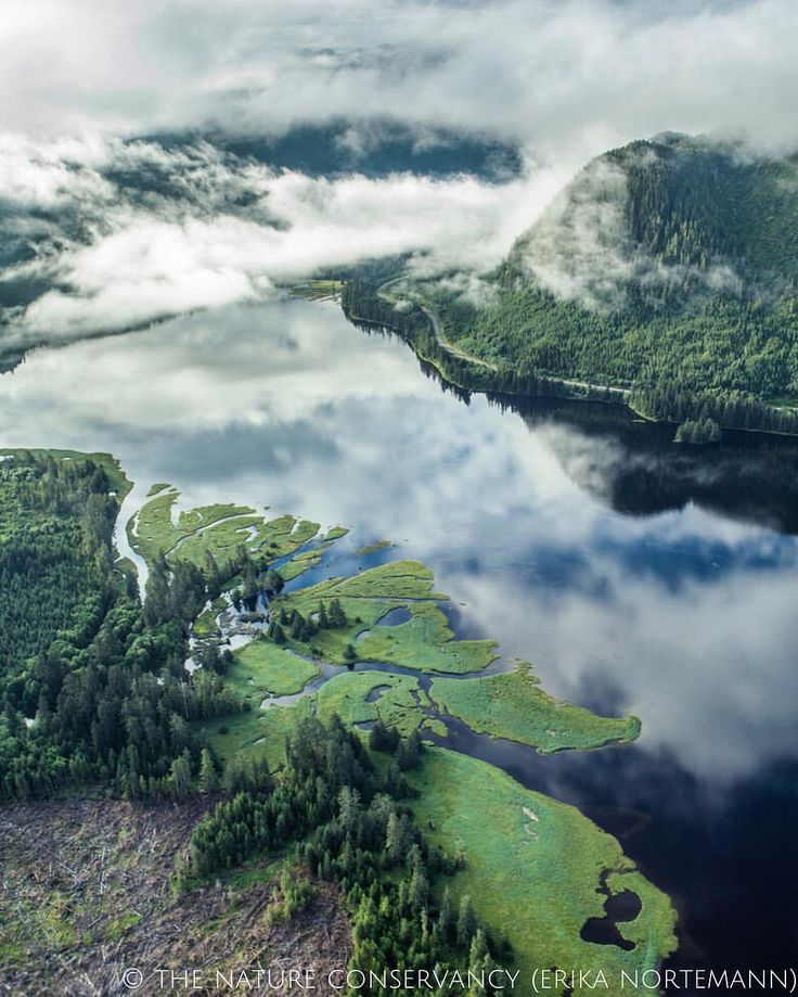 An aerial of the largest national forest in the United States. Southeast Alaska's Tongass National Forest during a flight from Prince of Wales Island—photo by Erika Nortemann.