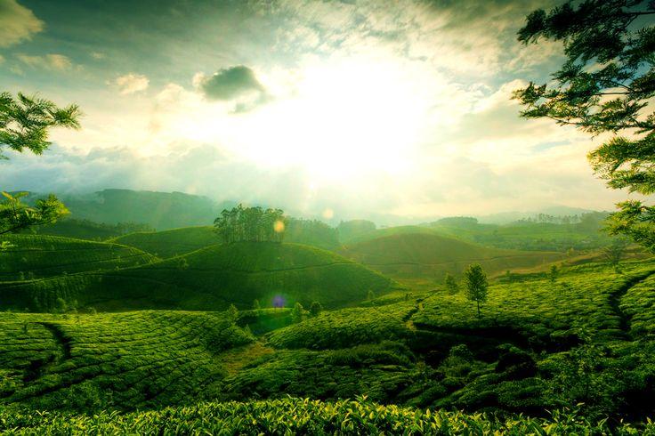 Kerala Holidays India