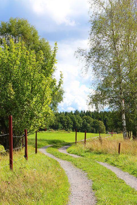 A walk through the Swedish countryside in Spiken, Sweden. #travel #sweden #photography www.kevinandamanda.com