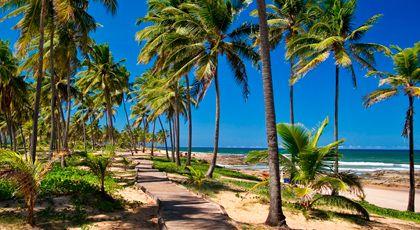 Pacotes de turismo promocionais, Pacotes turísticos | CVC Viagens