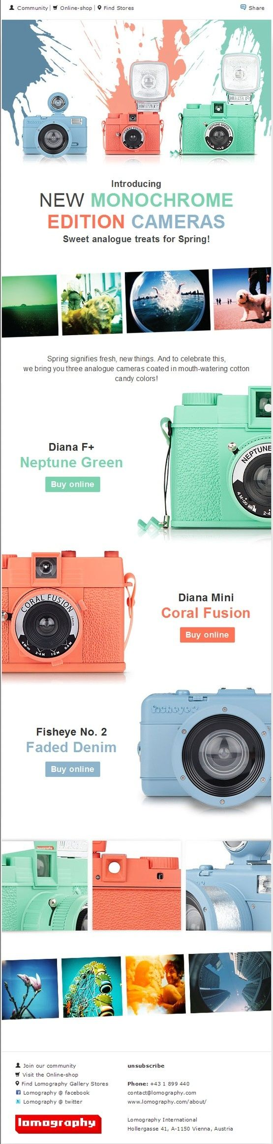 Lomography International – Newsletter HTML email marketing design