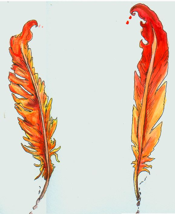 Phoniex Feather Designs by intrepidThrough.deviantart.com