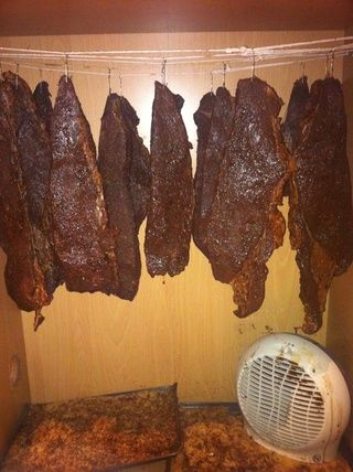 Now make little hooks from the paper clips and hang your meat. Be sure they don't touch and make sure they have plenty of room to air. You can hang your biltong anywhere as long as the area is dry.