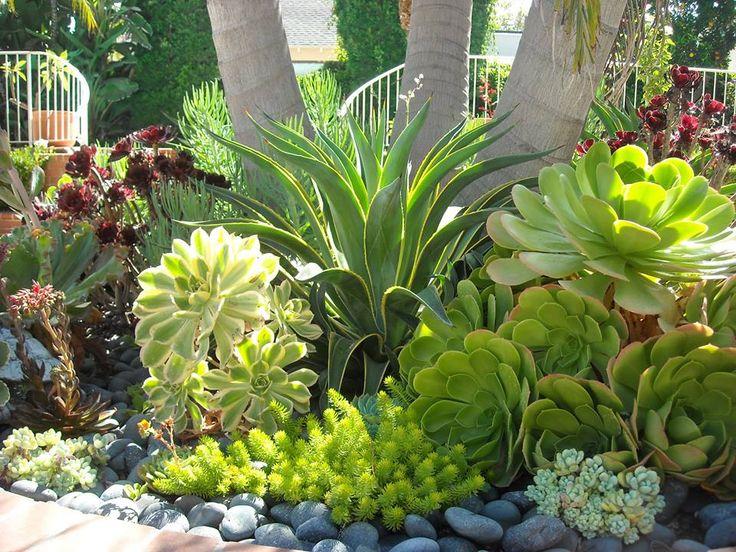 Garden Planters, Succulents Garden, Succulent Plants, Garden Art, Garden  Design, Garden Ideas, Succulent Landscaping, Backyard Landscaping,  Landscaping ...