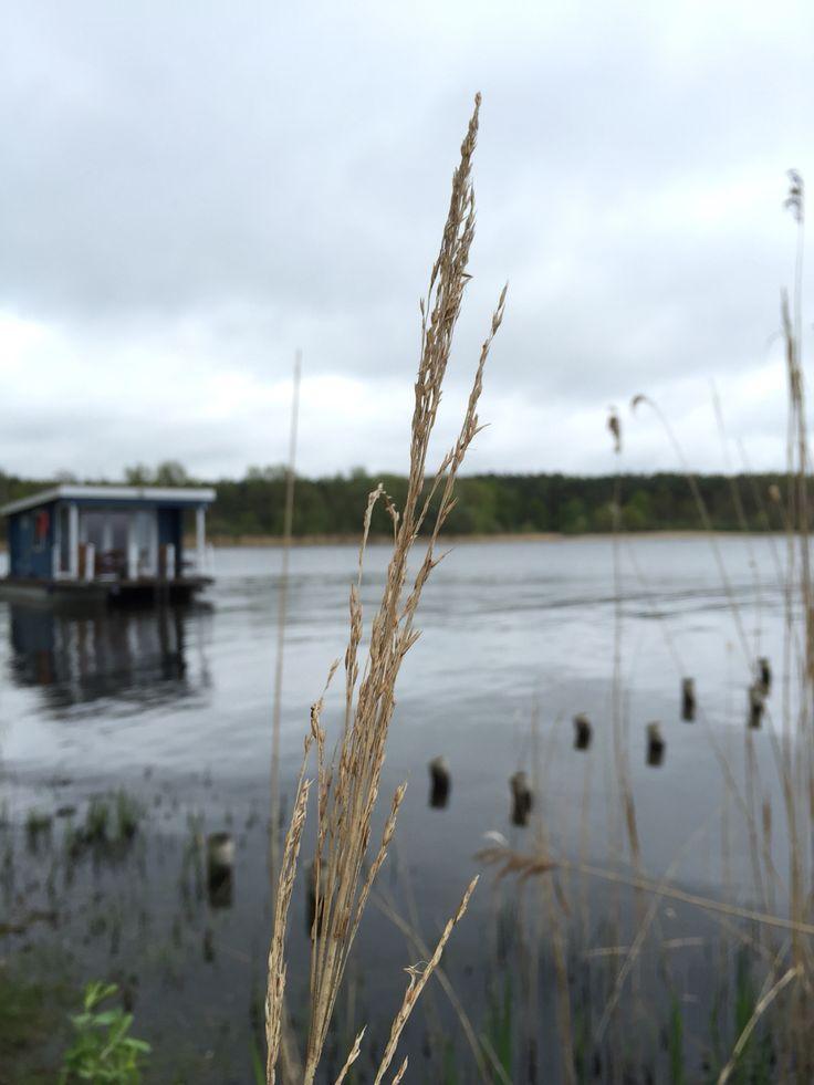 Freiheit auf dem Wasser! Bunbo Bungalowboot auf dem Breitlingsee in Brandenburg. An der Kanincheninsel. Wasserurlaub ohne Sportbootführerschein ☀️ Bunbo.de