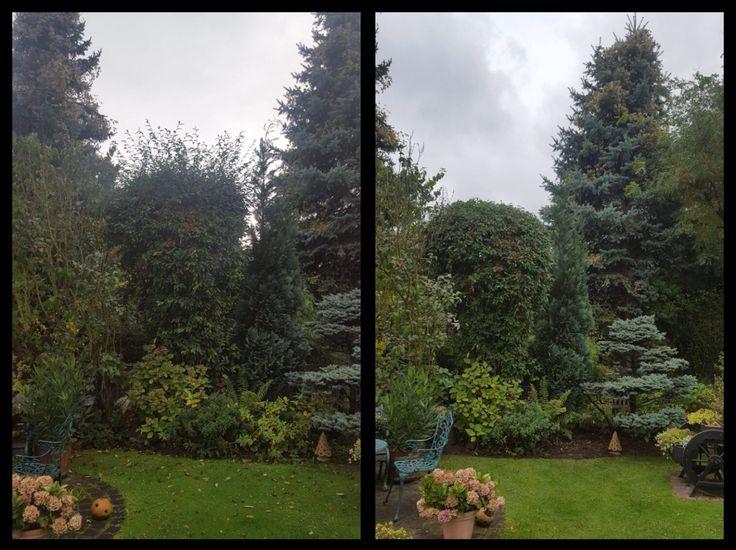 Spectacular Eine Grundpflege im Garten ist im Herbst und im Fr hling f llig und tut Ihren lieben Pflanzen so gut dass sie neue Kr fte f r weitere gl ckliche gr ne