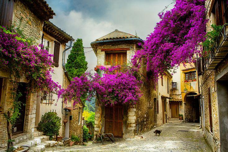 """Salir desde Marsella a nuestro aire y en coche, dirigirnos a algunos de los pueblos más bellos de Francia, pasar por el corazón provenzal y sus pueblos """"colgados en la montaña"""", seguir haciala zona de campos de lavanda más extensos y de postal de la región. Poner desde allí rumbo a la Costa Azul, pasando …"""