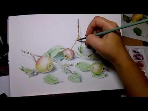 Видеоурок: рисуем дикие яблоки в технике «акварельная графика» - Ярмарка Мастеров - ручная работа, handmade