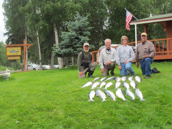Alaska Sockeye Salmon Fishing Report for Alaska Denise Lake Lodge    http://www.deniselakelodge.com/alaska-fishing-news