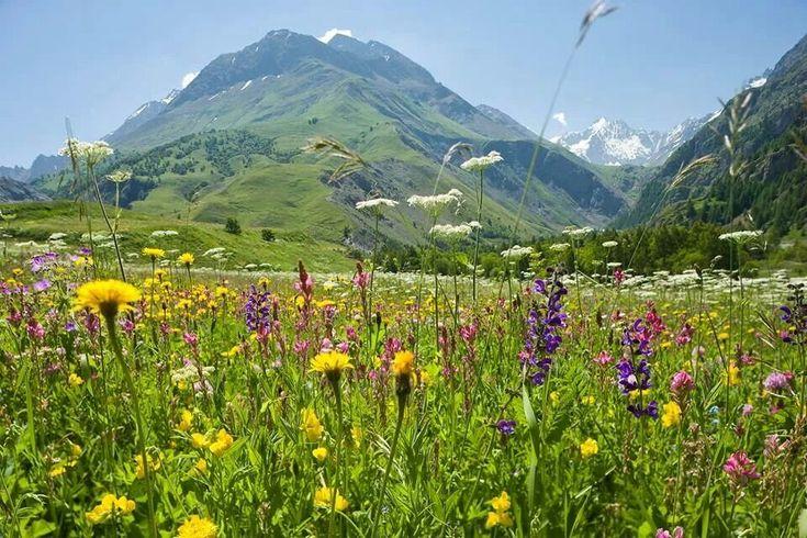 Ook in de zomer zijn de Franse Alpen een bezoekje waard!