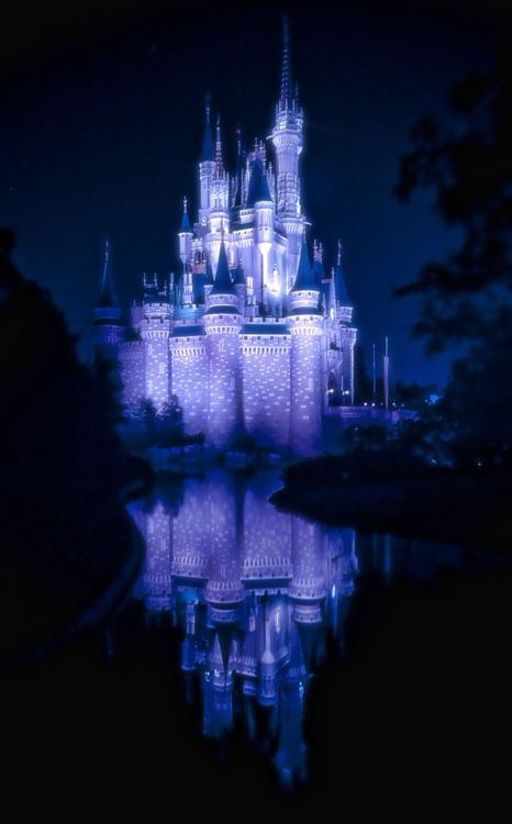so pretty. i just love all the pictures of the castleCastleth Castles, Dreams Home, Blue Fairies, Cinderella Castles, Disney Castles, Magic Castles, Blue View, Places, Cinderella Castleth