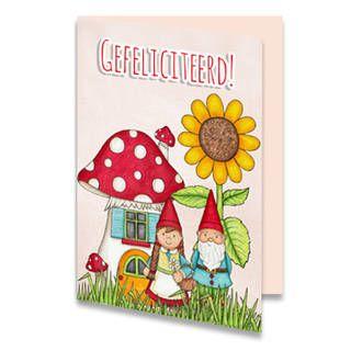 Een verjaardagskaart voor een kind van twee kabouters die voor hun huisje, een paddenstoel, staan. Naast hun huis groeit een zonnebloem. Bovenaan staat de tekst ''GEFELICITEERD!'' in rode letters geschreven. De achtergrondkleur is lichtroze. Aan de binnenkant van de verjaardagskaart is de achtergrondkleur lichtroze. Links onderin staat het paddenstoelen huisje.