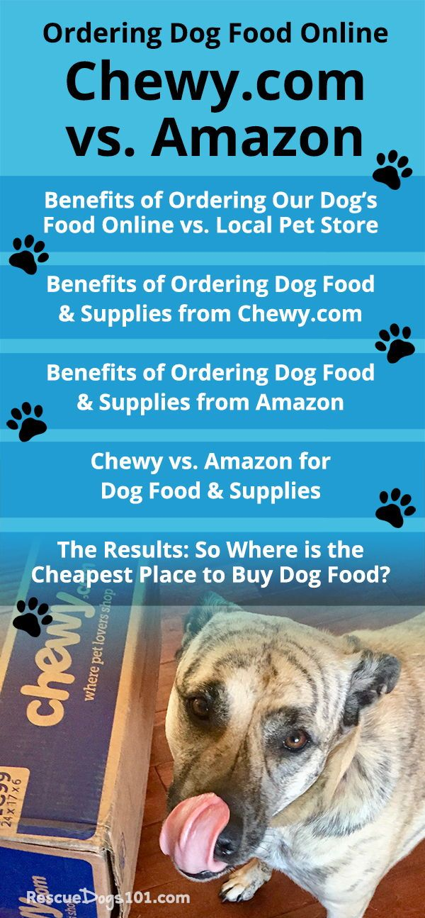 Best Place To Buy Dog Food And Supplies Online Dog Food Online Cheap Dog Food Dog Food Recipes