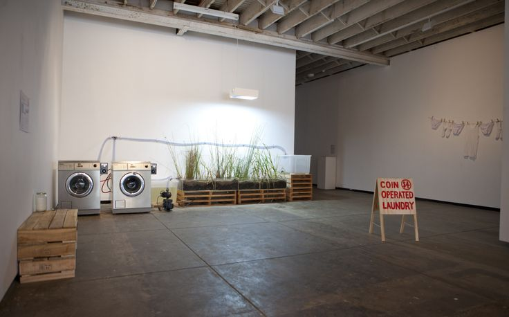 Coin Operated Wetland, 2011. Can a laundromat be partnered with a wetland?