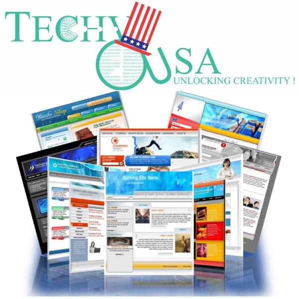 (718) 502-9088-Website design company in USA Techy-USA